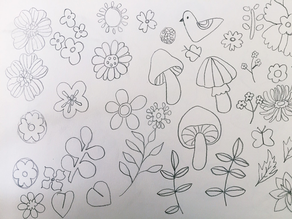 Pencil sketches of flowers and mushrooms
