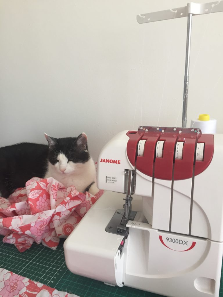 Cat sitting next to serger/overlocker